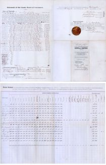 Tabular Statement Of Votes From Wisconsin, The Final State Counted In The Election Of 1876, The Second  Closest  Race In The History Of The United States