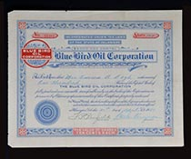 Blue Bird Oil Corp.