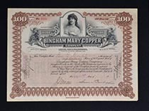 Bingham Mary Copper Co.