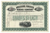 Arizona United Mining Company