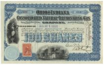 Ohio & Indiana Consolidated Natural & Illuminating Gas Co.-Issued To Anthony Brady